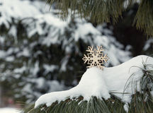 Christmas decoration on a real snow outdoors Stock Image