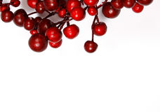 Christmas decoration from red berries. Isolated on white background Stock Image