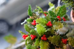 Christmas decoration. Red and green artificial plant Stock Images