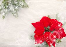 Christmas decoration, red, green and  white. Christmas red flower, branches of the Christmas tree, bright stars and snowflakes on a white background Royalty Free Stock Photos