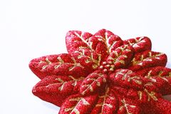 Christmas decoration, Red Poinsettia Stock Photography