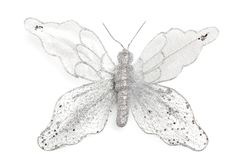 christmas decoration shiny butterfly on white isolated background stock images