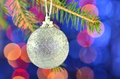 Christmas decoration, silver Christmas ball hanging on spruce twig Stock Image