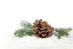 Christmas Decoration with snow Stock Images