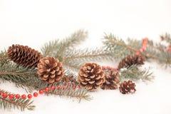 Christmas decoration on a snow Stock Photos
