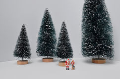 Christmas decoration and Snow on Wood. The Christmas decoration and Snow on Wood Royalty Free Stock Photography