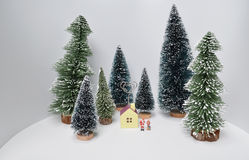 Christmas decoration and Snow on Wood. The Christmas decoration and Snow on Wood Royalty Free Stock Image