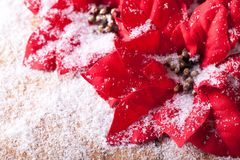 Christmas decoration and snowflakes Royalty Free Stock Images