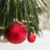 Christmas Decoration in Snowy Forest Stock Images