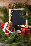 Christmas decoration with teddy bear Stock Image