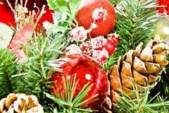 Christmas Decoration on the tree Royalty Free Stock Images