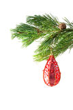 Christmas decoration on the tree stock photos
