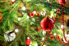 Christmas decoration on tree with light Stock Images