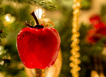 Christmas decoration on tree Stock Images