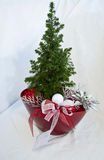 Christmas decoration tree in red pot Stock Photos