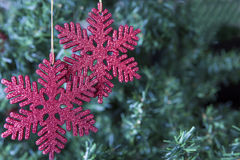 Christmas decoration - two red snowflakes Royalty Free Stock Image