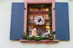 Christmas decoration with white bear in Strasbourg. STRASBOURG, FRANCE - DECEMBER 29 2015: Christmas decoration with white bear in medieval city of Strasbourg Royalty Free Stock Photos