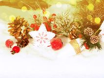 Christmas decoration winter berries and snow on wooden backgroun. Christmas fruit berries apple and decoration with fir branches snow Stock Photography