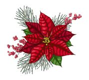 Christmas Decoration With Red Poinsettia. Royalty Free Stock Photo