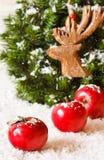 Christmas. Stock Photography