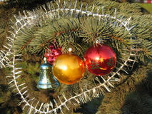 Christmas decorations. Blue bell, gold and red balls on branch of fir tree Stock Photo