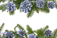 Christmas decorations background pine pines spruce twig white Stock Photo