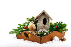 Christmas decorations: bird, birdhouse and fir tree branches Stock Images