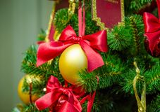 Christmas decorations on the branches of fir tree Stock Image