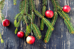 Christmas Decorations. Christmas apple Royalty Free Stock Images