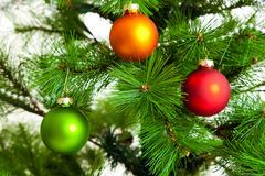 Christmas decorations.  Christmas ball and green spruce branch Royalty Free Stock Images