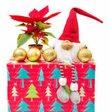 Christmas decorations and poinsettia Royalty Free Stock Photo