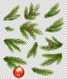 Christmas decorations. Fir branches, pine, conifer cone. Royalty Free Stock Photos