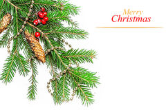 Christmas decorations on a fir tree Royalty Free Stock Images