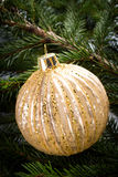 Christmas Decorations on Fir Tree background Royalty Free Stock Image