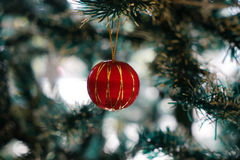 Christmas decorations focusing on ball hanging on pine tree Royalty Free Stock Images
