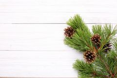 Christmas decorations, gilt cones on a pine branch on a white wo Stock Images