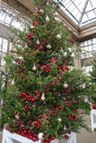 Christmas decorations in the greenhouses of Longwood Gardens. Christmas decorations in the greenhouses. Christmas tree decorated with red balls Stock Image