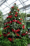 Christmas decorations in the greenhouses of Longwood Gardens. Christmas tree decorated with red flowers and silver balls stock photography