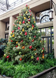Christmas decorations in the greenhouses of Longwood Gardens. Christmas tree with glass ornaments of different color pears Stock Photography