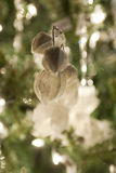 Christmas decorations hanging in green xmas tree Royalty Free Stock Photography