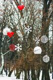 Christmas decorations hanging on tree in park. Hearts, snowflake stock images
