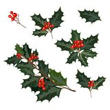 Christmas decorations with holly and red berries. Christmas decorations with holly, berries and decorative elements. Design element for Christmas decoration royalty free illustration