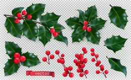 Christmas decorations. Holly, red berries. 3d vector icon set stock illustration
