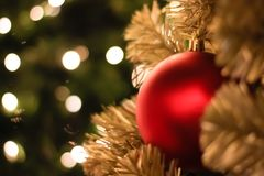 Christmas decorations and lighting on the branches christmas tre. E, soft focus Royalty Free Stock Image