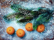 Christmas decorations, mandarine Stock Image