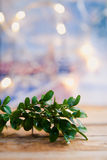Christmas decorations- mistletoe Stock Photos