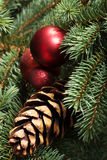 Christmas decorations- pine, balls on a tree. Royalty Free Stock Photo