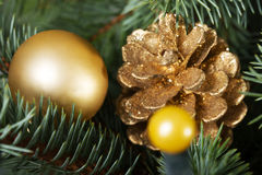Christmas decorations- pine, balls on a tree. Royalty Free Stock Image