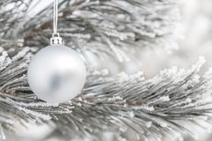 Christmas decorations on the pine branch Stock Photography