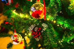 Christmas Decorations, Pine Needles and Pine Cone, Xmas Traditions Royalty Free Stock Images